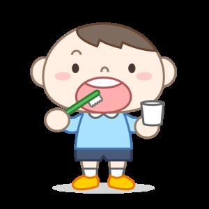 歯ブラシの交換時期🔄